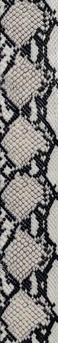 Settecento Animalier Cobra Ivory 11,9x72 Rett. 76672